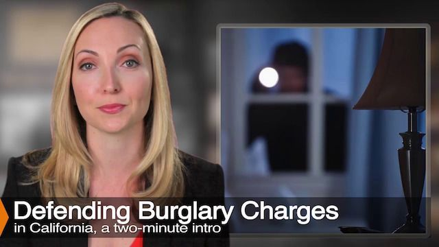 Diana Aizman Discusses Burglary Charges