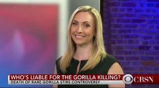 Diana Aizman discusses tragic killing of Harambe at Cincinati Zoo