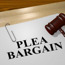 Dry Reckless Plea Bargain Folder