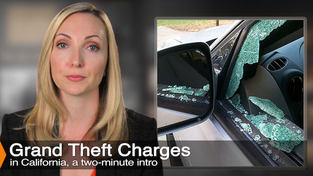 Diana Aizman Discusses Grand Theft