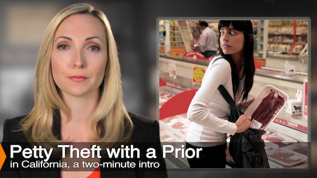 Diana Aizman Discusses Petty Theft With A Prior Conviction