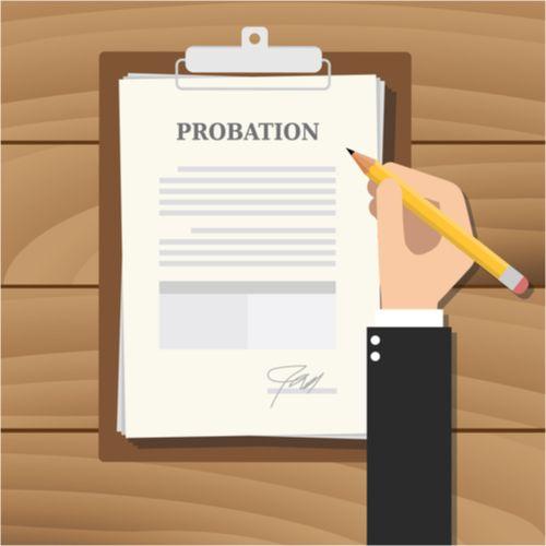 probation vector